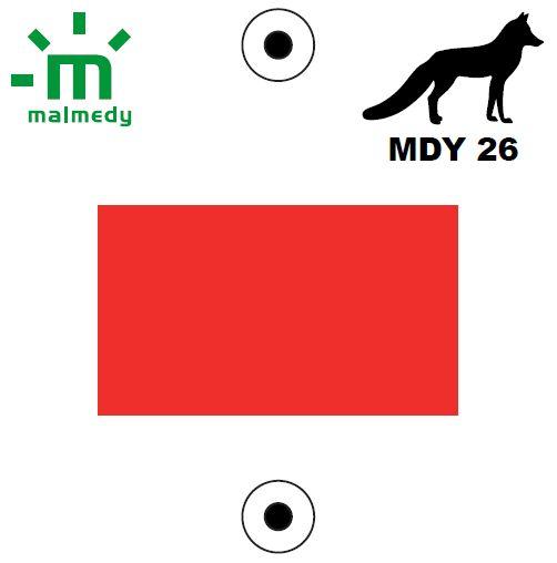 MDY26 | Les Hêtres entrelacés